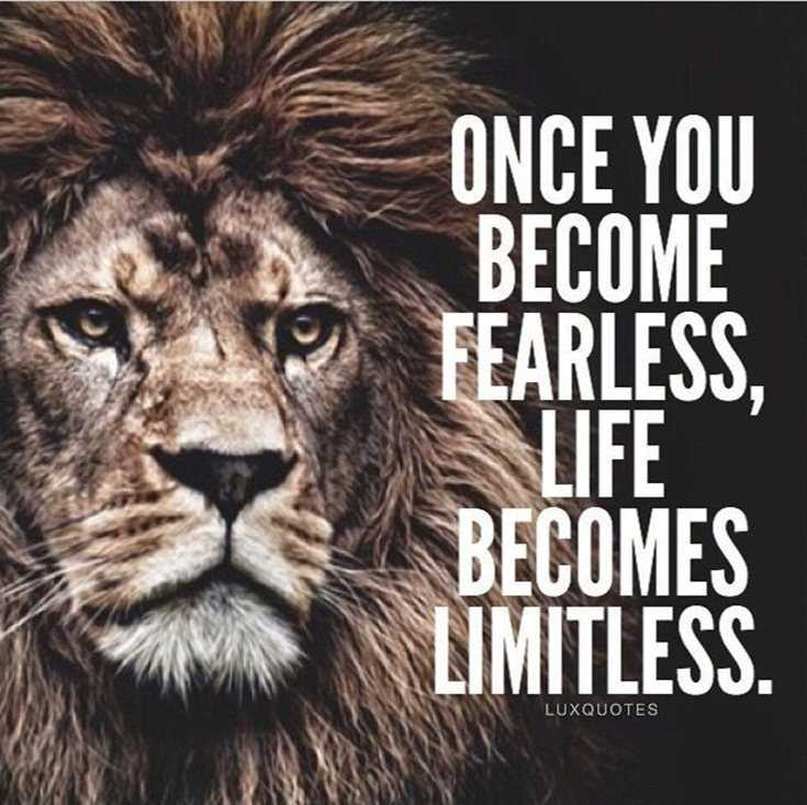 Motivational Quotes 377 Motivational Inspirational Quotes for success 19