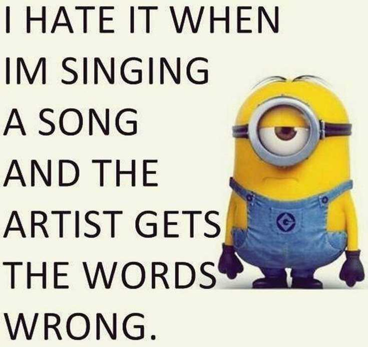 Top 29 Funny Minions Quotes and Pic 1