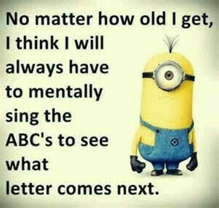 Top 29 Funny Minions Quotes and Pic 10