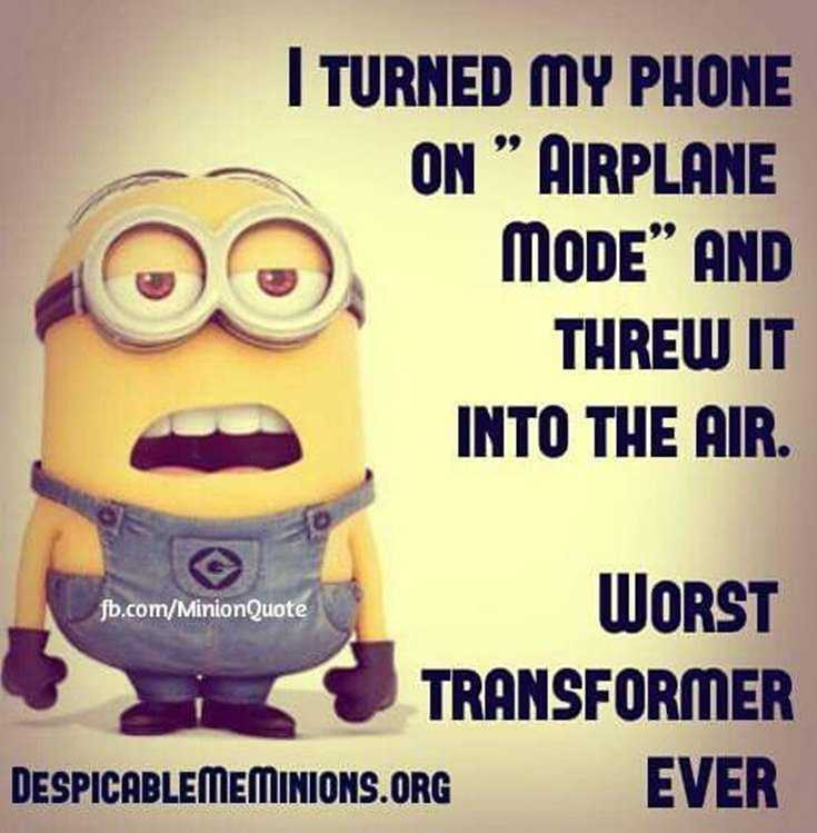Top 29 Funny Minions Quotes and Pic 11