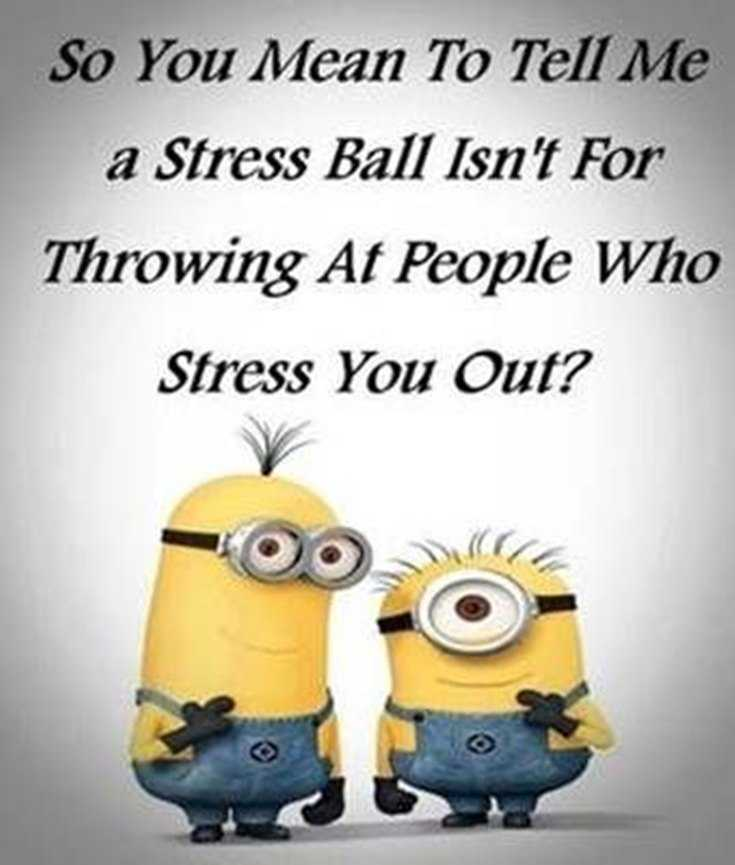 Top 29 Funny Minions Quotes and Pic 12