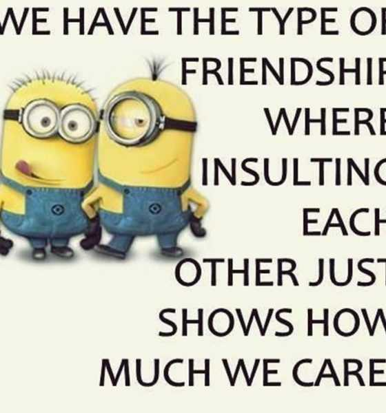 Top 29 Funny Minions Quotes and Pic 13