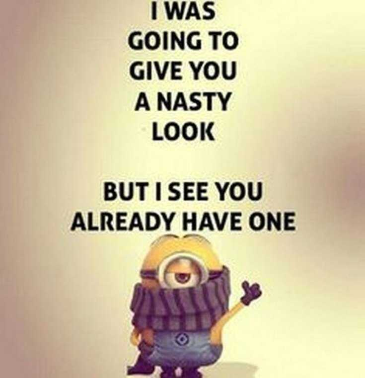 Top 29 Funny Minions Quotes and Pic 15