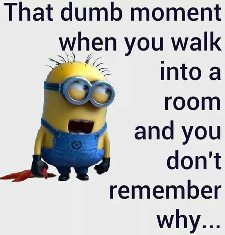 Top 29 Funny Minions Quotes and Pic 16