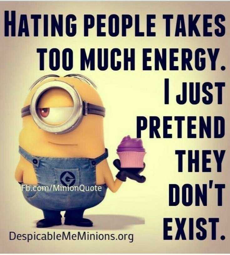 Top 29 Funny Minions Quotes and Pic 2