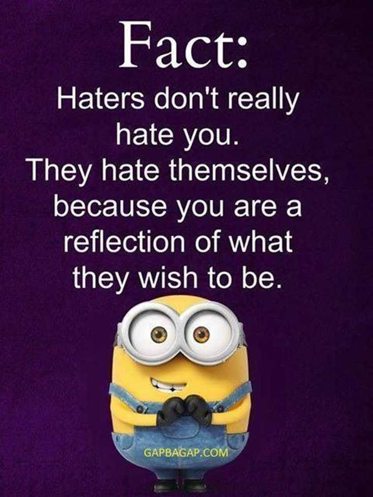 Top 29 Funny Minions Quotes and Pic 20