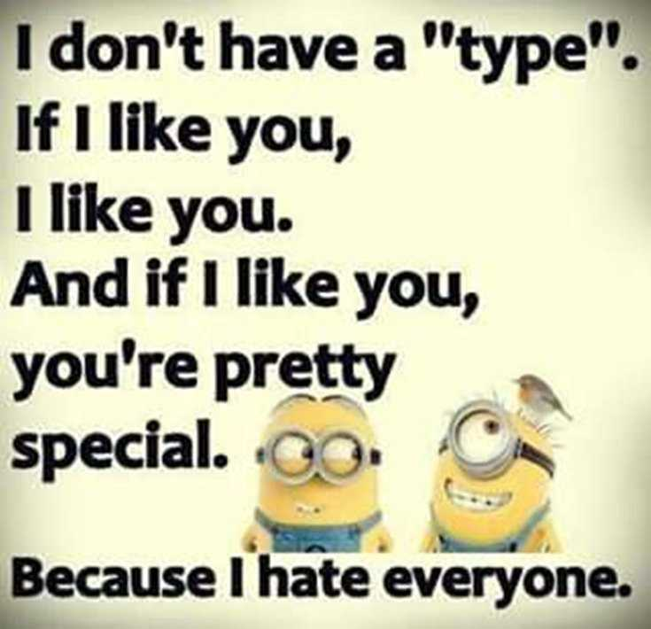 Top 29 Funny Minions Quotes and Pic 21