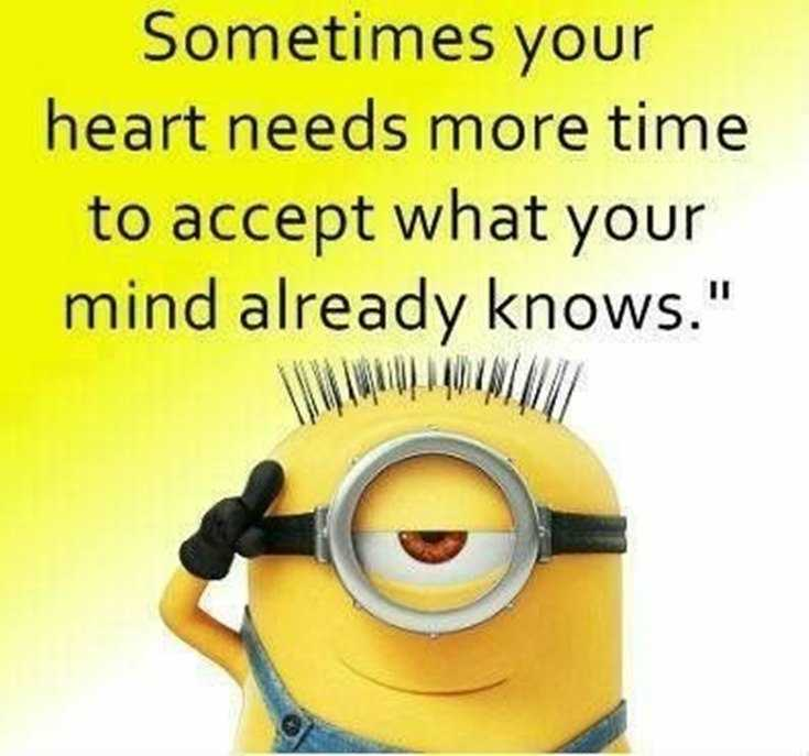 Top 29 Funny Minions Quotes and Pic 25