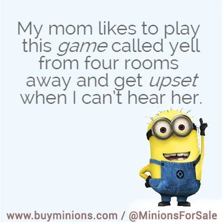 Top 29 Funny Minions Quotes and Pic 26
