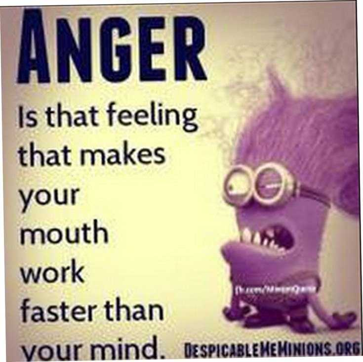 Top 29 Funny Minions Quotes and Pic 29