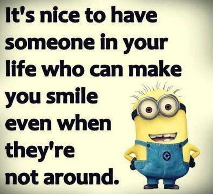 Top 29 Funny Minions Quotes and Pic 4