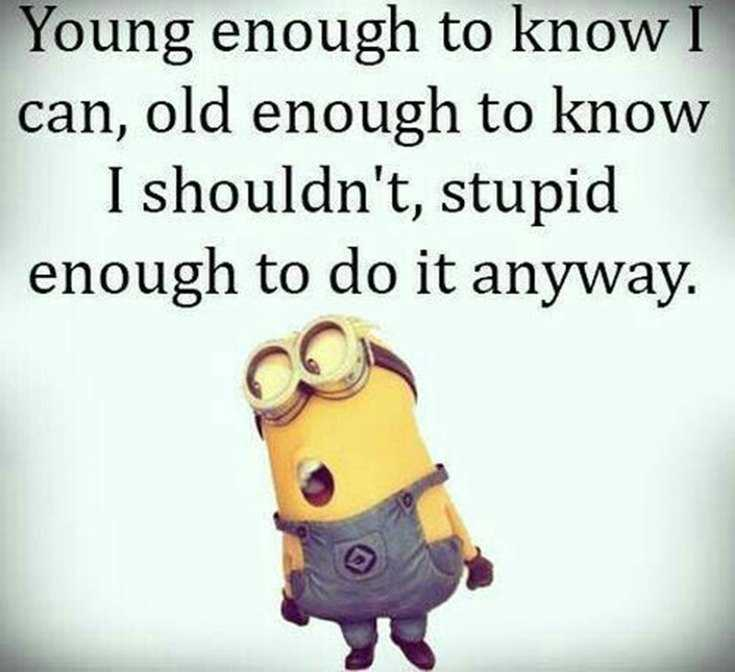 Top 29 Funny Minions Quotes and Pic 7