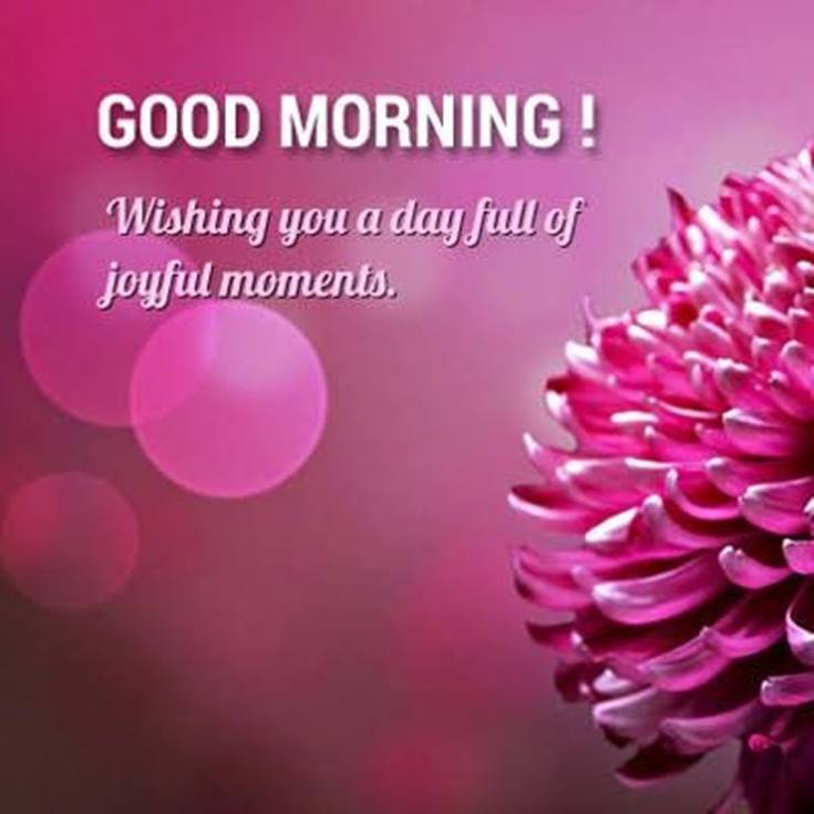 21 Good Morning Quotes and Wishes with Beautiful Images 15