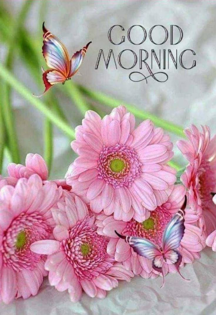 31 Good Morning Quotes and Wishes with Beautiful Images 21