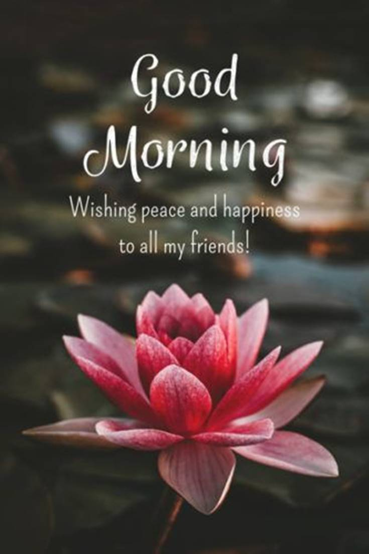 31 Good Morning Quotes and Wishes with Beautiful Images 26