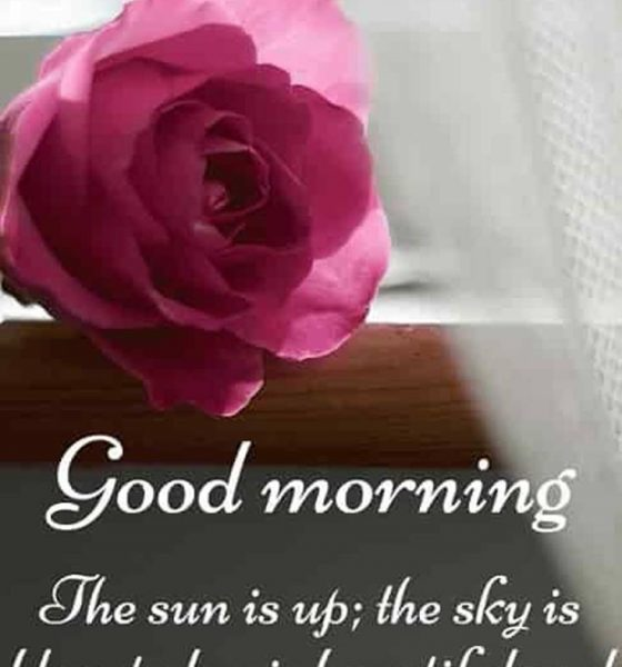 31 Good Morning Quotes and Wishes with Beautiful Images 30