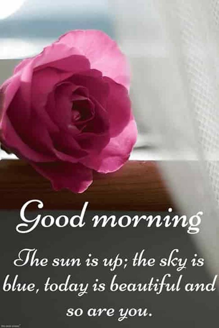 31 Good Morning Quotes and Wishes with Beautiful Images ...