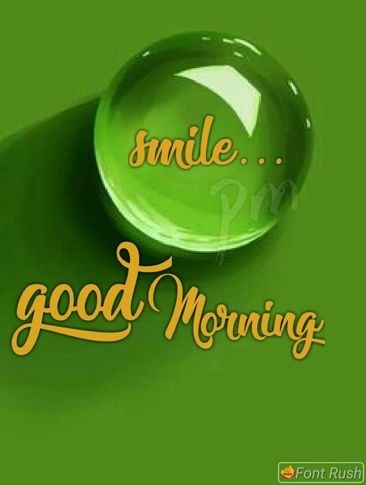 31 Good Morning Quotes and Wishes with Beautiful Images 4