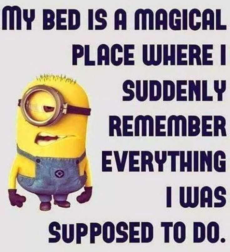 Best Minion quotes images 1