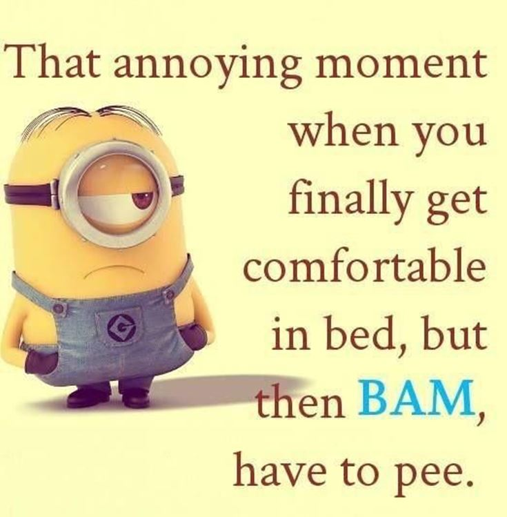 Best Minion quotes images 13