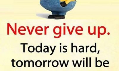 Best Minion quotes images 16