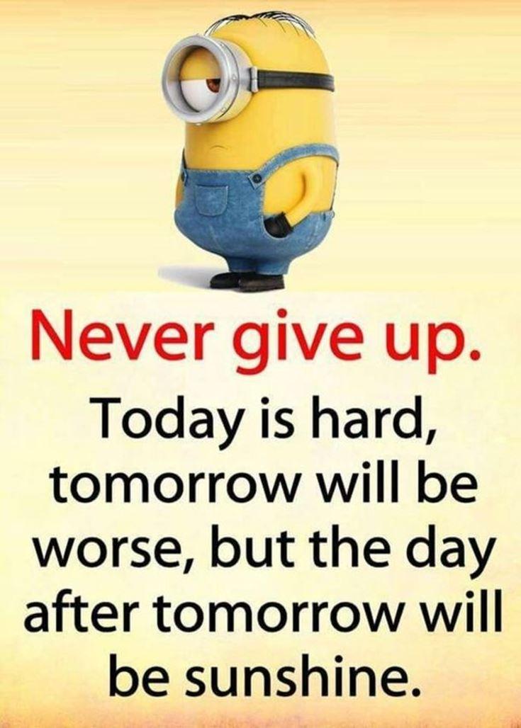Best Minion quotes images 16