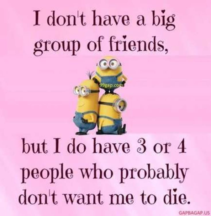 Best Minion quotes images 21