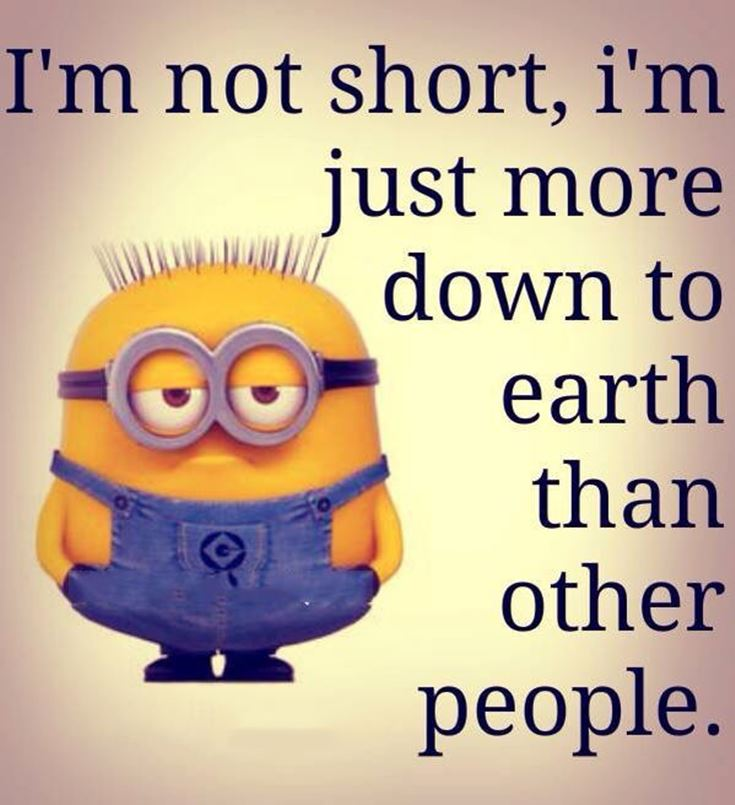 Best Minion quotes images 22