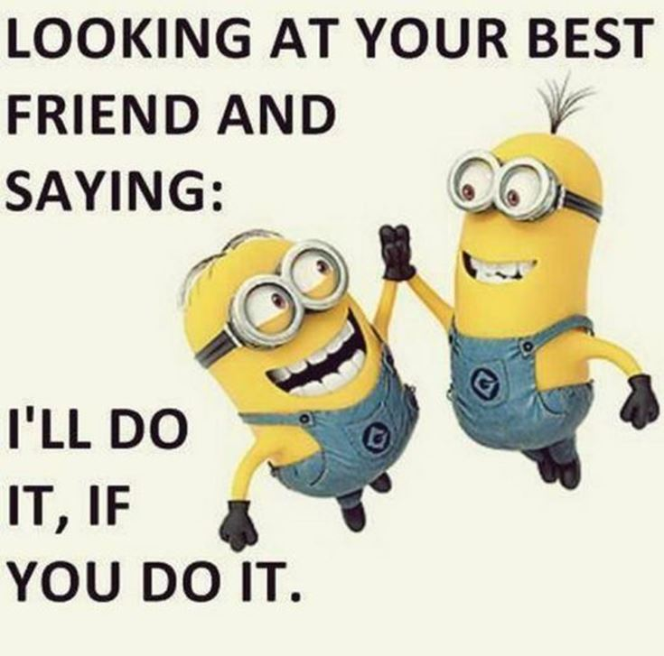 Best Minion quotes images 4