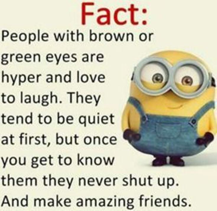 Best Minion quotes images 6