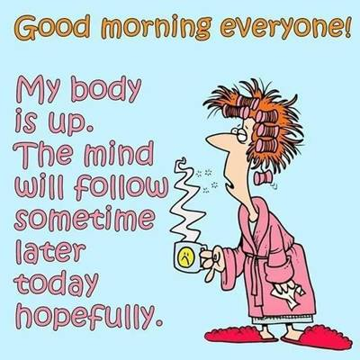 funny good morning wishes and funny memes 36