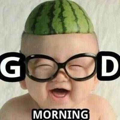 funny good morning wishes and funny memes 48
