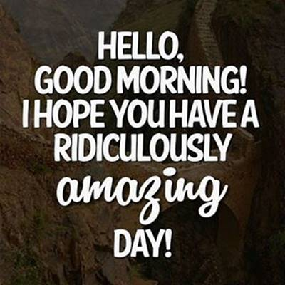 funny good morning wishes and funny memes 5