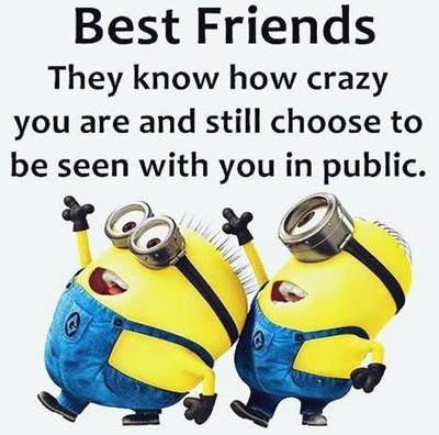 50 Crazy Funny Friendship Quotes for Cute Friends 1