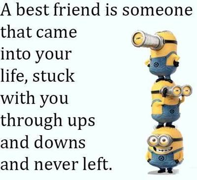 50 Crazy Funny best friend quotes short funny friendship quotes and sayings
