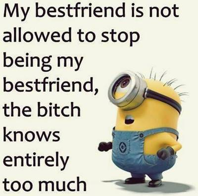 50 Crazy Funny Friendship Quotes for Cute Friends 32