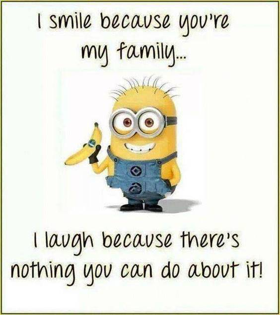 60 Funny Jokes Minions Quotes With Minions 38