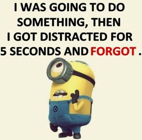 60 Funny Jokes Minions Quotes With Minions 5