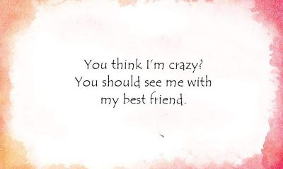 Crazy Funny Friendship Quotes for Cute Friends