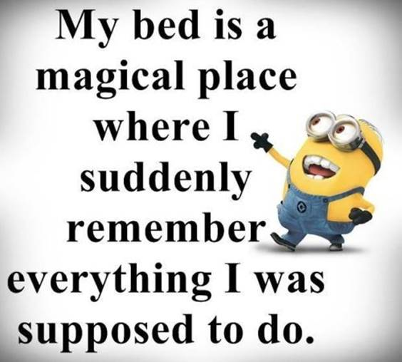 42 Fun Minion Quotes Of The Week 1