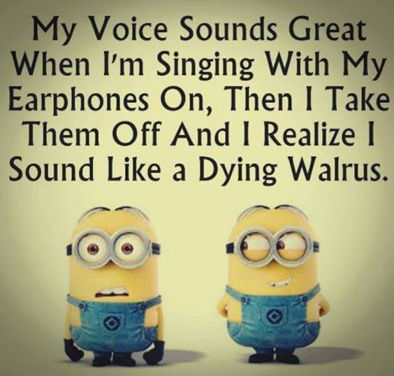 42 Fun Minion Quotes Of The Week minion quotes funny thing said just for fun