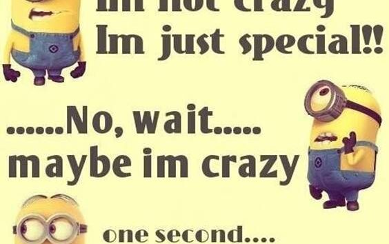 42 Fun Minion Quotes Of The Week 24