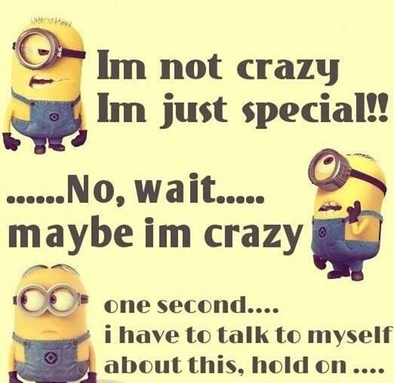 42 Fun Minion Quotes Of The Week minion funny quotes funny nonsense words