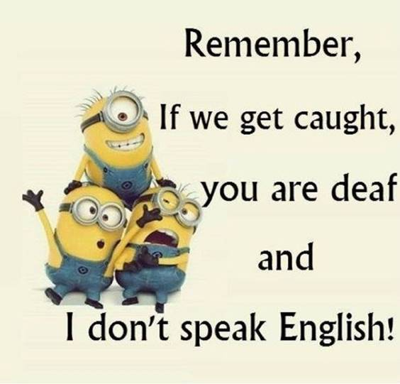 42 Fun Minion Quotes Of The Week 3