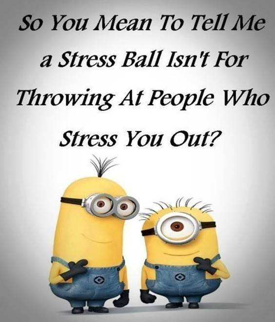 42 Fun Minion Quotes Of The Week 32