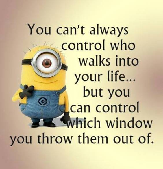 42 Fun Minion Quotes Of The Week 6