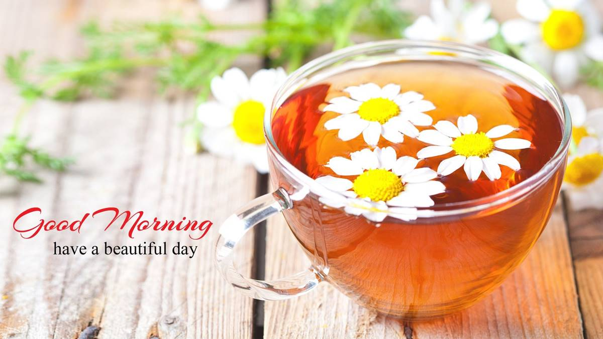 Inspirational Good Morning Messages for Colleagues Messages Wishes