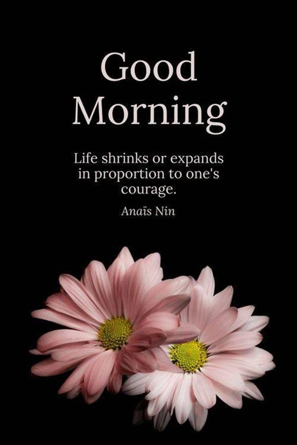 45 Motivational Morning Messages - Good Morning ideas | spiritual morning quotes, good morning godly quotes, good morning strong quotes