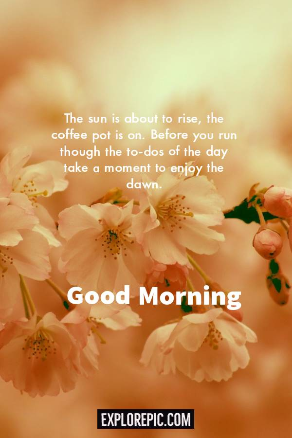 45 Motivational Morning Messages Good Morning ideas 3