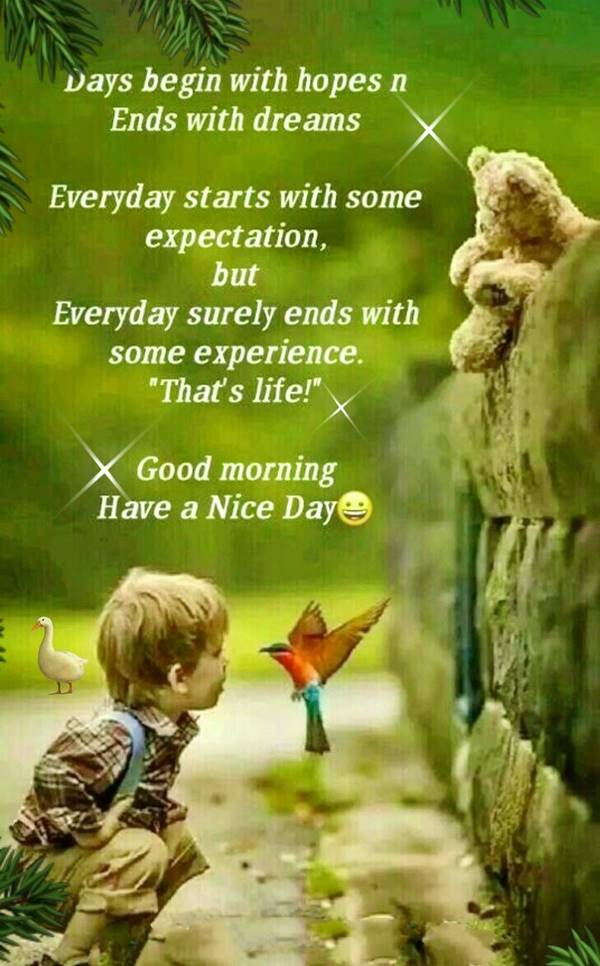 45 Motivational Morning Messages - Good Morning ideas | good morning grateful quotes, good morning pictures for her, good morning quotes new day